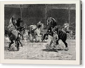 The Shire Horse Show At The Agricultural Hall Canvas Print by English School