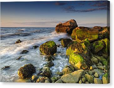 The Shore Of The Sound Canvas Print by Rick Berk