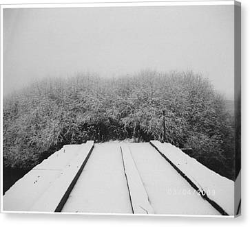 The Silence Of Winter Canvas Print by James Rishel