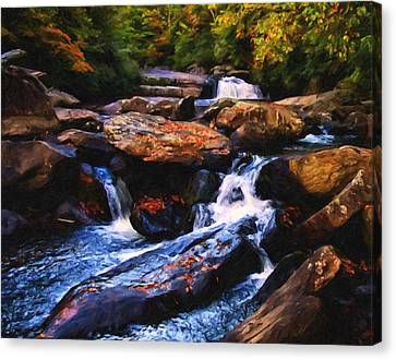Country Scene Canvas Print - The Skull Waterfall by Chris Flees