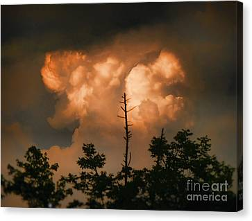 The Sky Above Canvas Print