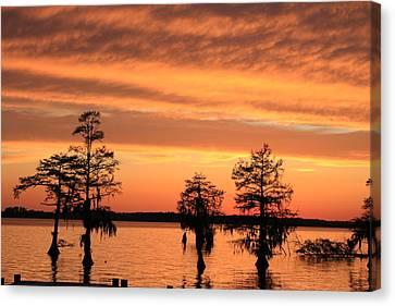 The Sky At Sunset Canvas Print by Carolyn Ricks