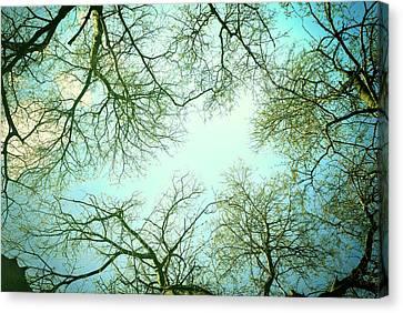 The Sky Canvas Print by Guido Montanes Castillo