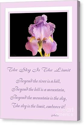 The Sky Is The Limit V 10 Canvas Print