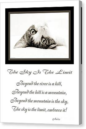 The Sky Is The Limit V 3 Canvas Print