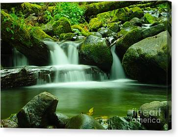 The Small Water Canvas Print by Jeff Swan