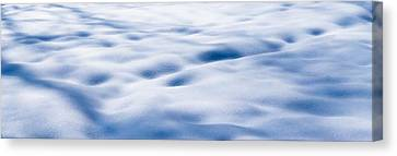 The Snow Carpet - Featured 2 Canvas Print by Alexander Senin