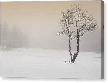 The Solitude Of Winter Canvas Print by Bill Wakeley