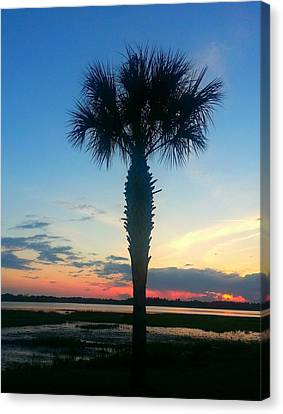Canvas Print featuring the photograph The Solo Palm by Joetta Beauford