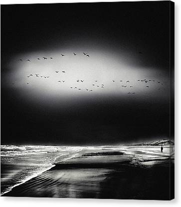 The Song Of The Wet Sands Canvas Print