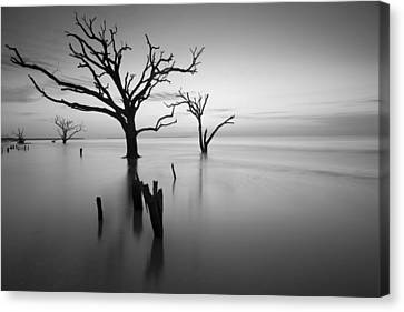 The Sound Of Silence Canvas Print by Bernard Chen