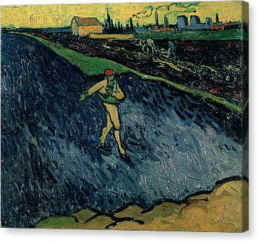 The Sower Canvas Print by Vincent van Gogh