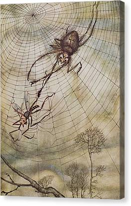 The Spider And The Fly Canvas Print by Arthur Rackham