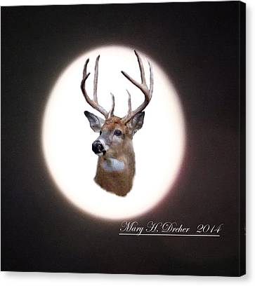 The Spirit Of Goldie Canvas Print by Mary Dreher