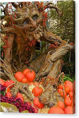 The Spirit Of The Pumpkin, Nevada, U.s.a. Canvas Print