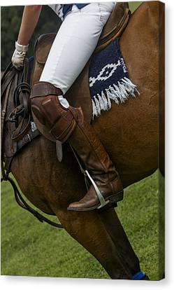 The Sport Of Kings Canvas Print by Susan Candelario