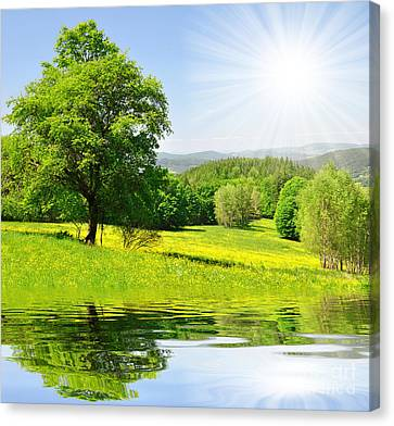 The Spring Landscape Canvas Print by Boon Mee