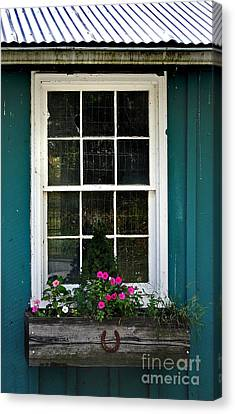 The Stable Window Canvas Print by Skip Willits