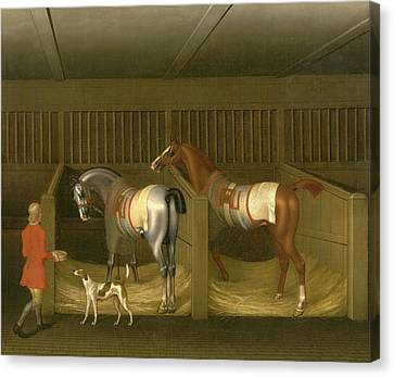 Horse Stable Canvas Print - The Stables And Two Famous Running Horses Belonging by Litz Collection