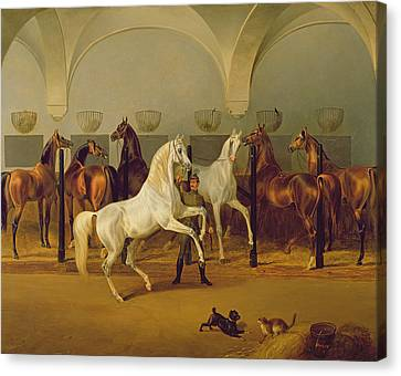 The Stables At Babolna Canvas Print by Otto Stotz