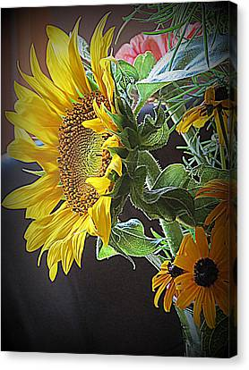 The Standout  Canvas Print by Kay Novy
