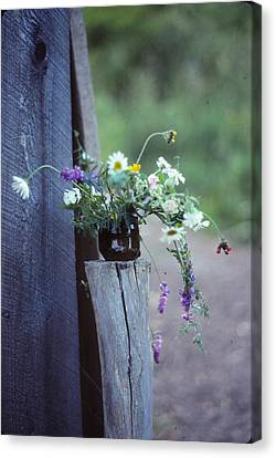 The Still Life Of Wild Flowers Canvas Print by Patricia Keller