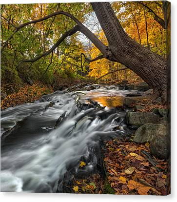 The Still River Square Canvas Print by Bill Wakeley