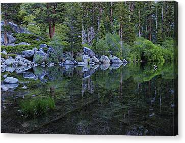 Canvas Print featuring the photograph The Stillness Of Dawn  by Sean Sarsfield