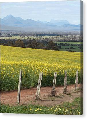 The Stirling Range Canvas Print by Kelly Jones