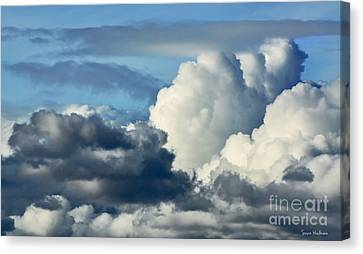 The Storm Arrives Canvas Print