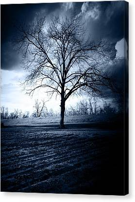 The Storm Canvas Print by Susan Bordelon