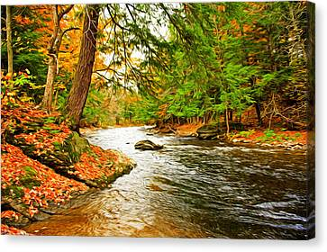The Stream Canvas Print by Bill Howard