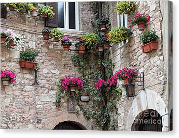 Canvas Print featuring the photograph The Streets Of Assisi 2 by Theresa Ramos-DuVon