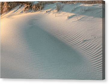 The Subtlety Of Shadow  Canvas Print by JC Findley