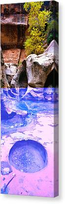 The Subway At Zion National Park, Utah Canvas Print by Panoramic Images
