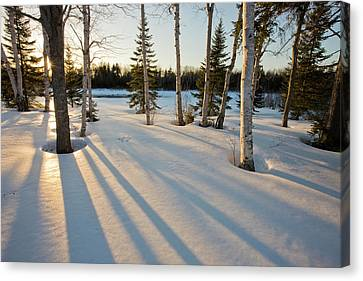 Maine Winter Canvas Print - The Sun Goes Down Behind The Trees by Jerry and Marcy Monkman