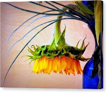 The Sunflower Speaks Canvas Print