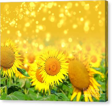 The Sunflowers Canvas Print