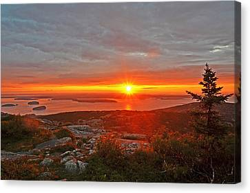 The Sunrise From Cadillac Mountain In Acadia National Park Canvas Print
