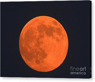 The Super Moon Canvas Print by Marcia Lee Jones