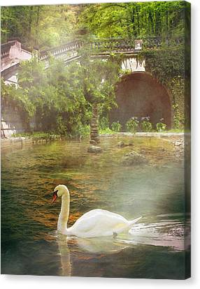 The Swan Lake Canvas Print by Pati Photography
