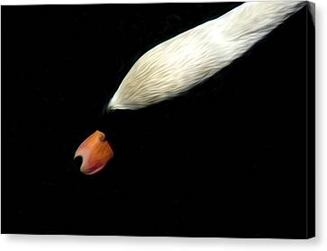 The Swan Under Water Canvas Print