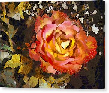 Flower Blooms Canvas Print - The Sweetest Rose 1 by Angelina Vick