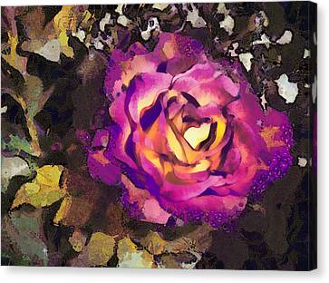Flower Blooms Canvas Print - The Sweetest Rose 2 by Angelina Vick