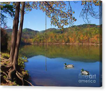 Rooted Canvas Print - The Swimming Hole by Lena Auxier