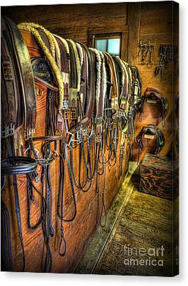 The Tack Room - Equestrian Canvas Print by Lee Dos Santos