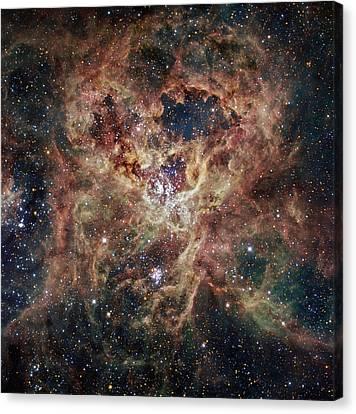 Andromeda Galaxy Canvas Print - The Tarantula Nebula  by Celestial Images