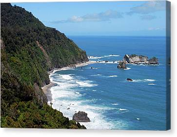 The Tasman Sea, Karamea, New Zealand Canvas Print by Lynn Seldon