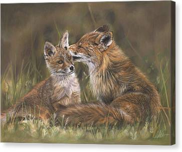 Fox Kit Canvas Print - The Tender Nudge by Terry Kirkland Cook