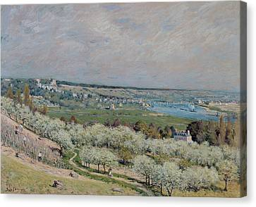 The Terrace At Saint Germain Canvas Print by Alfred Sisley